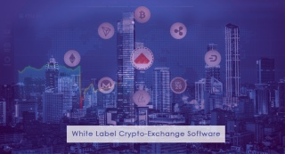 How to get White Label Crypto Exchange Software for my business?