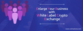 Start a White label Crypto Exchange Software