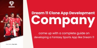 Dream11 Clone App Development Company