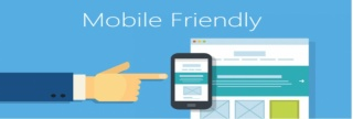 We will make your website mobile friendly for $100
