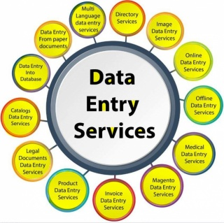 I will do Data Entry job for $10